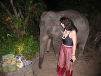 A baby elephant in Phuket. Note to self: in the future, don't take pictures like this. Ex-girlfriend either looks HUGE next to t
